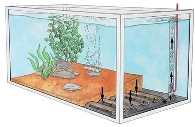 Как сделать фильтр на аквариум своими